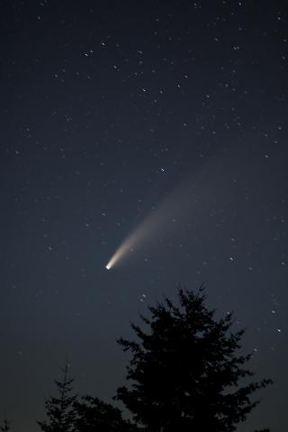 Comet0720-366